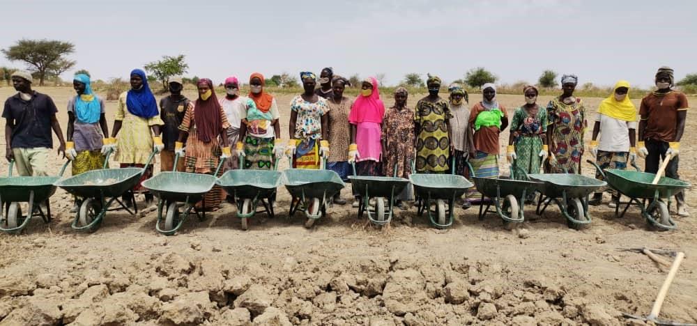 Mopti  – Projes Mali poursuit ses travaux à haute intensité de main d'oeuvre au profit des jeunes